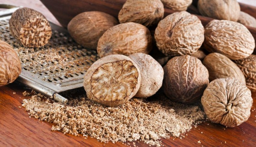 Мускатный орех – происхождение, применение, свойства