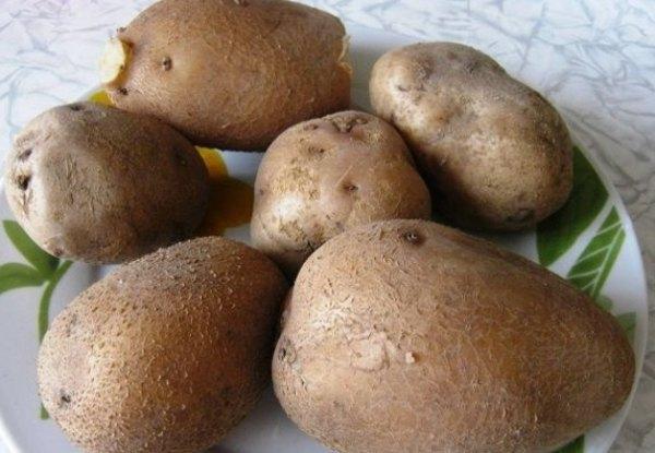 Картофель запеченный с фаршем в духовке1